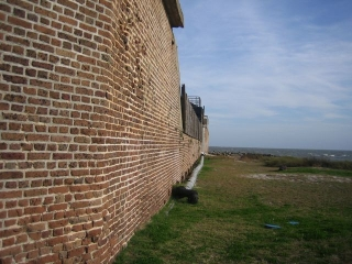 fortsumpter